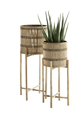 Bamboo Plant Stands