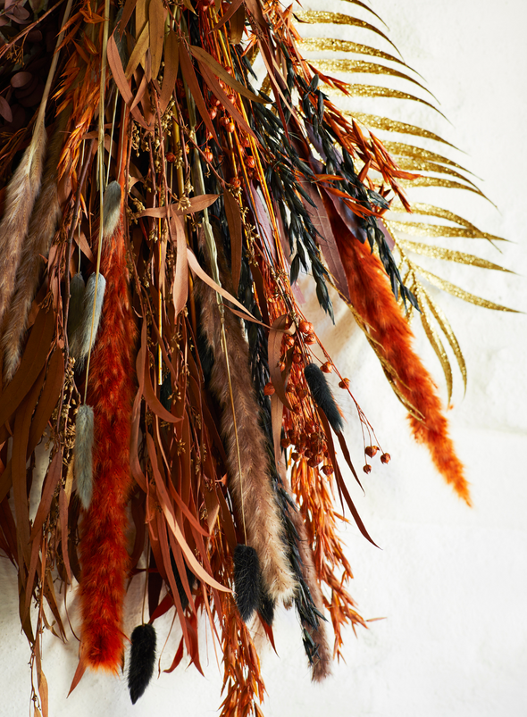 Dried Flower - Orange Triticum Aestivum