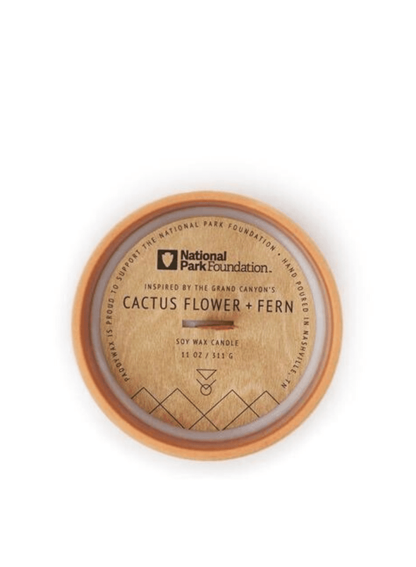 Parks Grand Canyon Cactus Flower & Fern Candle from Paddywax