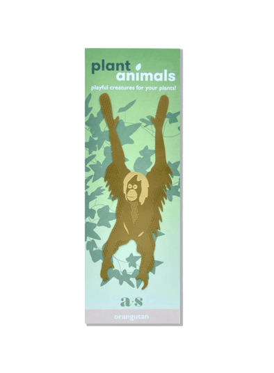 Plant Animal - Orangutan