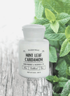 White Apothecary Mint Leaf and Cardamom Candle from Paddywax
