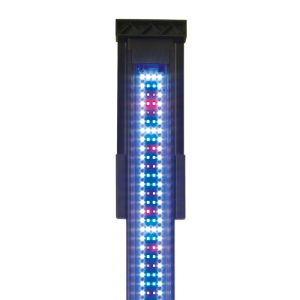 Fluval Sea Marine &  Reef LED 2.0