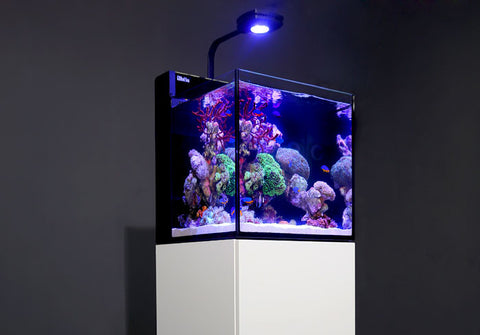 Red Sea Max Nano Reef System & Red Sea Max Nano Reef System u2013 Aqua Dreams