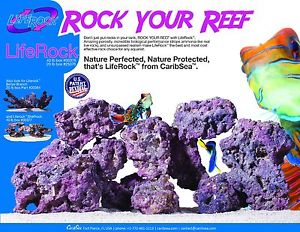 Carib Sea Life Rock / per lb.