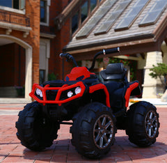 Electric quad bike for kids 550W motors