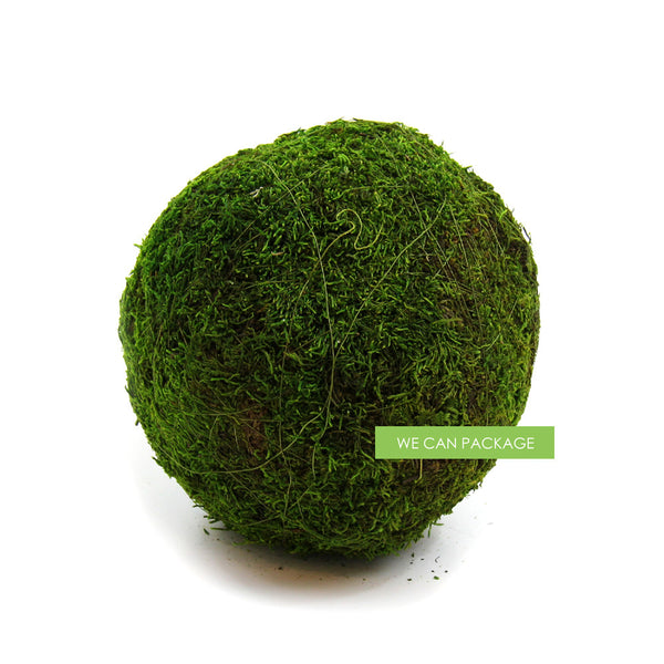 10 Inches Moss Ball