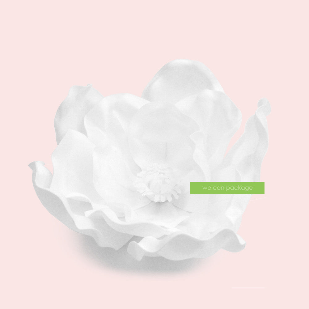 White Magnolia Flowers We Can Package