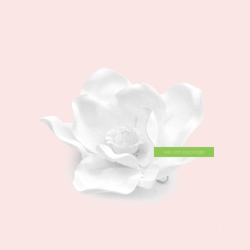 White magnolia flowers we can package white flower wall 8 inches white magnolia flower mightylinksfo