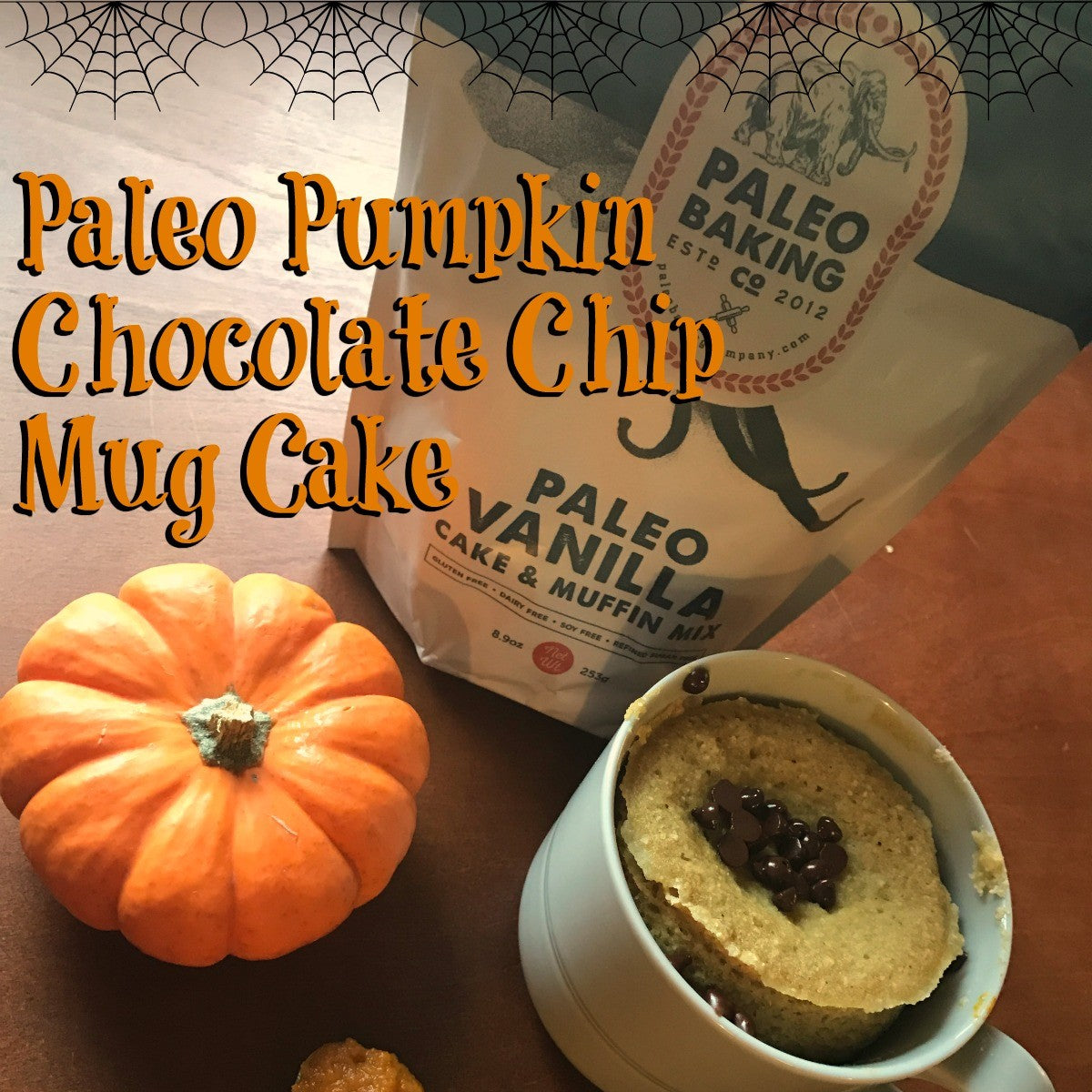 Paleo Pumpkin Chocolate Chip Mug Cake