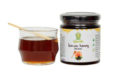 Natural Jamun Honey (250g)