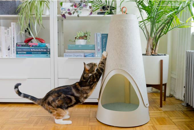 Kickstarter Pick: Wiski Cat Scratchers