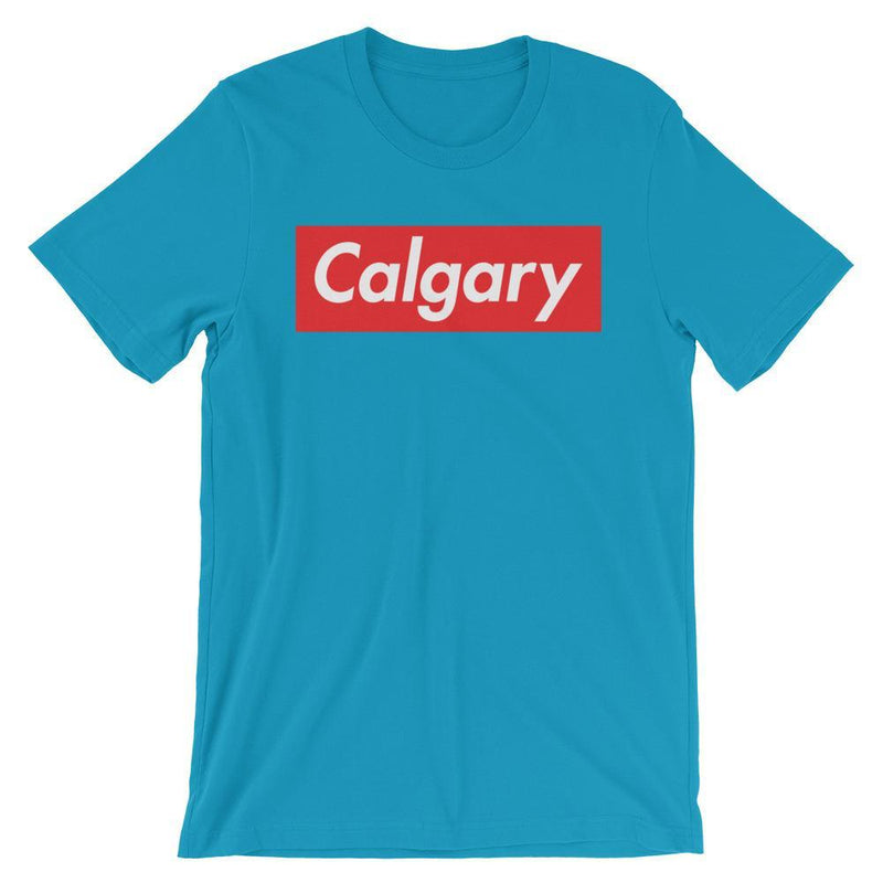 Repparel Calgary Aqua / S Hypebeast Streetwear Eco-Friendly Full Cotton T-Shirt