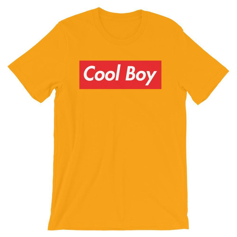 Repparel Cool Boy Gold / S Hypebeast Streetwear Eco-Friendly Full Cotton T-Shirt
