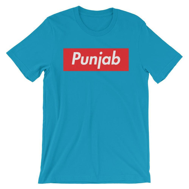 Repparel Punjab Aqua / S Hypebeast Streetwear Eco-Friendly Full Cotton T-Shirt