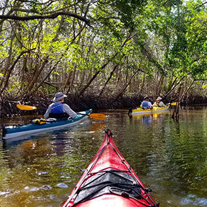 Everglades Ecology Park Fees and Canoe Rental