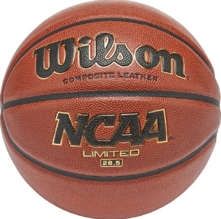 Girls Basketballs