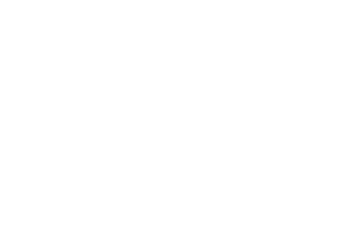 Vegan Bundle - 25% off
