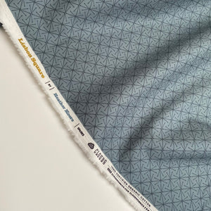 Organic Cotton by Cloud9 - Sparks - Grey - 0.5 metre
