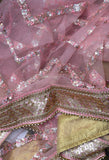 Beautiful Net dupatta with Embroidery & Stitched border