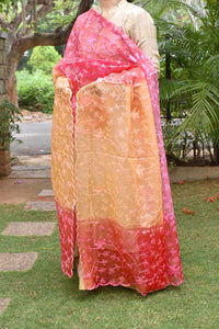 Elegant Organza dupatta with Embroidery and multi dye