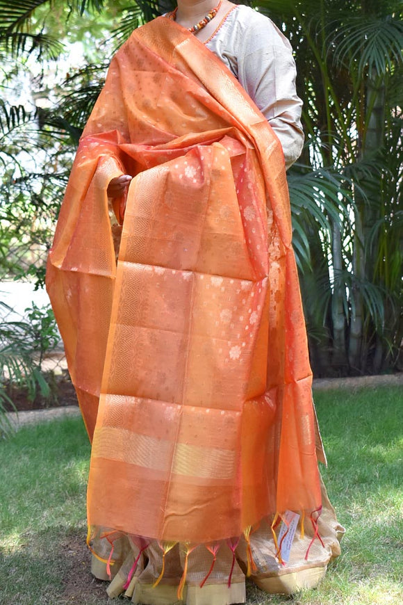 Beautiful Woven  Si-co dupatta