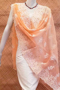 Elegant Organza dupatta with Embroidery