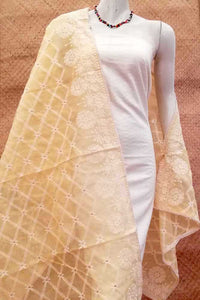 Noil cotton dupatta with embroidery