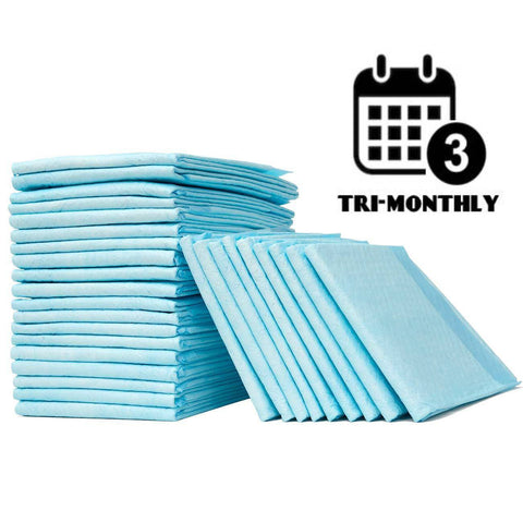 every 3 months disposable bed pads subscription