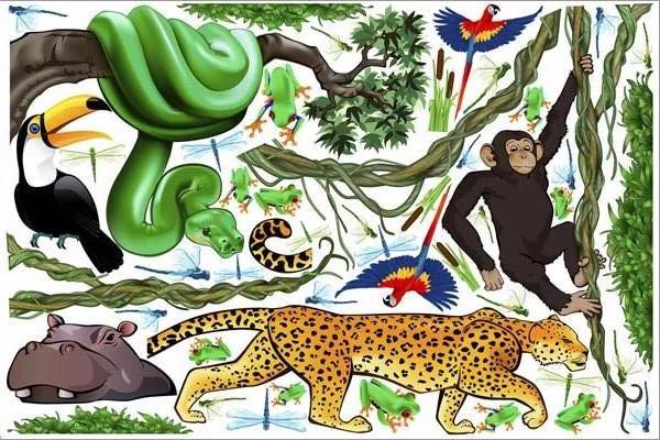 jungle exploration wall decals/stickers print view
