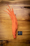Orange Solid Feathers