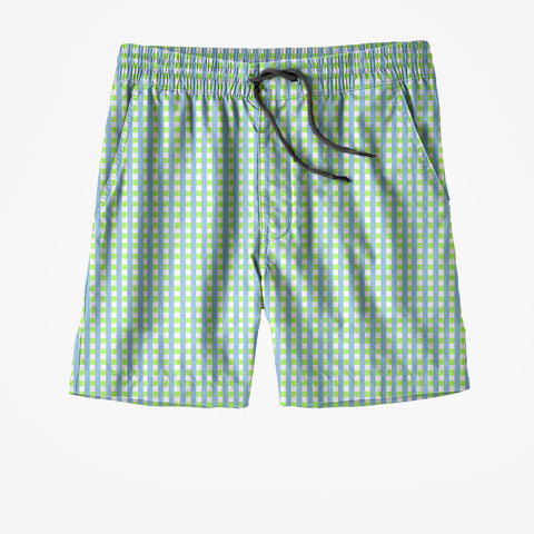 Light Blue and Green Swim Trunks