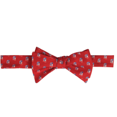 Mississippi Traditional Bow Tie Red