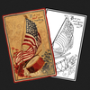 4th of July Flag Postcard Rug Kit or Pattern