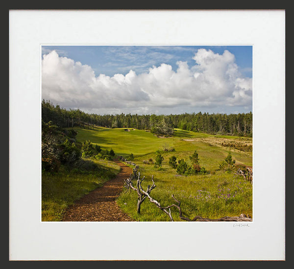 Print - Bandon Trails #14 Wood Sabold