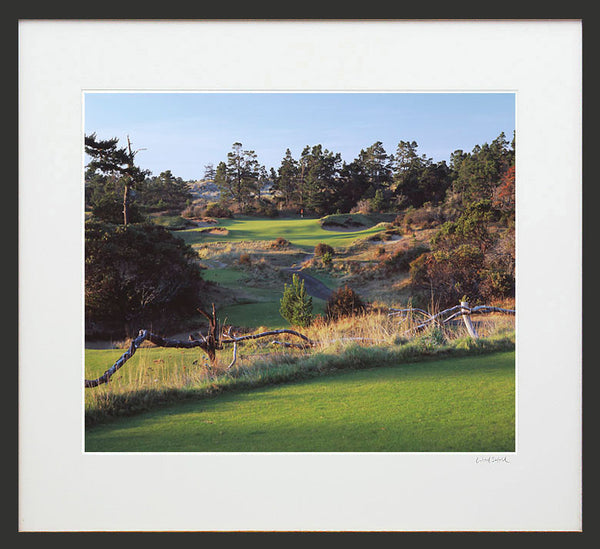 Print - Bandon Trails #17