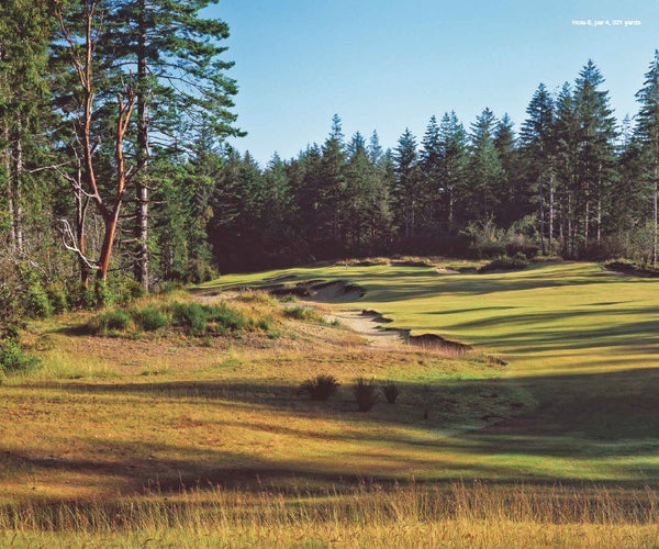 Print - Bandon Trails #8