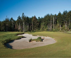 Print - Bandon Trails #11