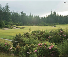 Print - Bandon Trails #12