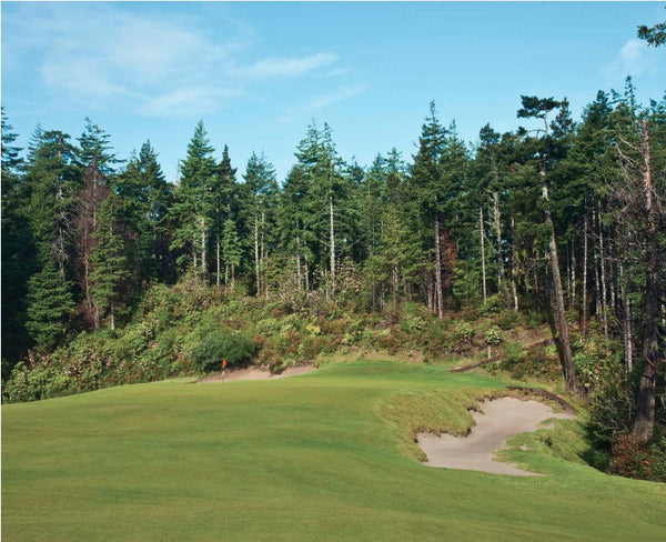 Print - Bandon Trails #13