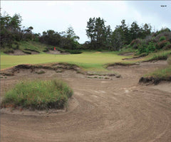 Print - Bandon Trails #15