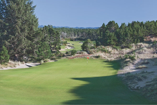 Pg. 110 - Bandon Trails - Hole #2