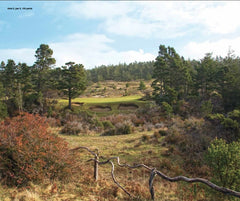 Print - Bandon Trails #5