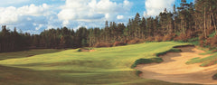 Panorama - Bandon Trails #6