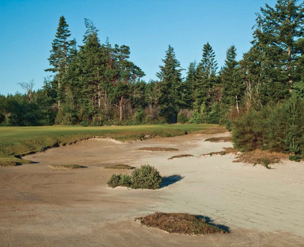 Print - Bandon Trails #10
