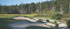 Panorama - Bandon Trails #11