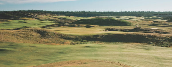 Panorama - Old Macdonald #8