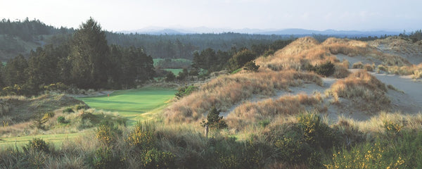 Panorama - Bandon Trails #2