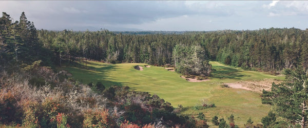 Panorama - Bandon Trails #14
