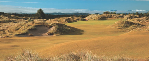 Panorama - Bandon Trails #1