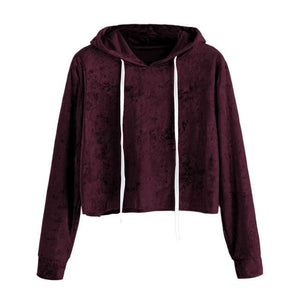 Autumn Womens Hoodie Sweatshirts 2018 Fashion Brand Velvet Solid Hooded Sweatshirt Longuotelab-uotelab